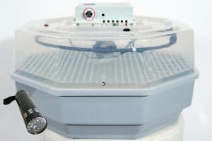 incubateur semi-automatique Qubeat