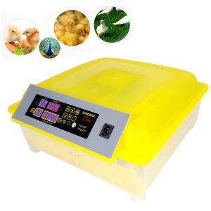 Incubateur automatique 48 œufs Buyi-World